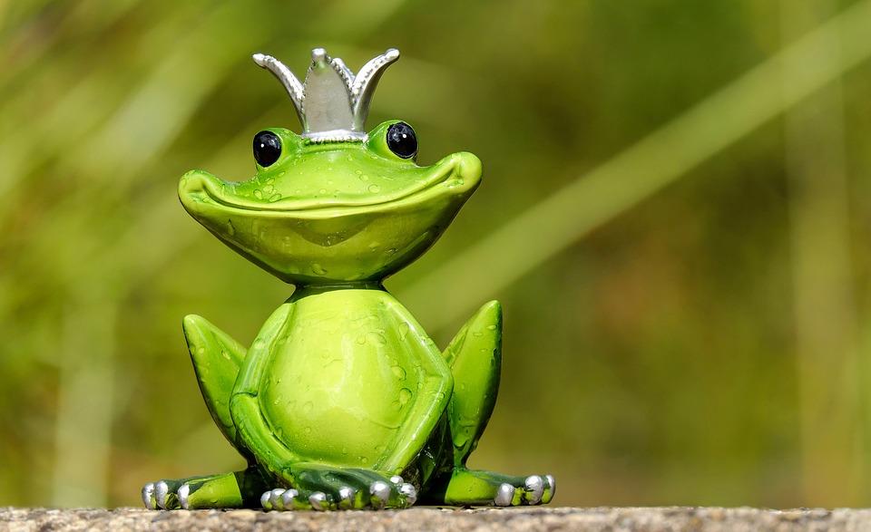 カエルの王様