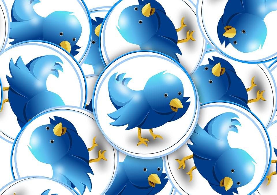 ツイッターの青い鳥