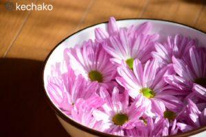 食用菊を水に浸ける