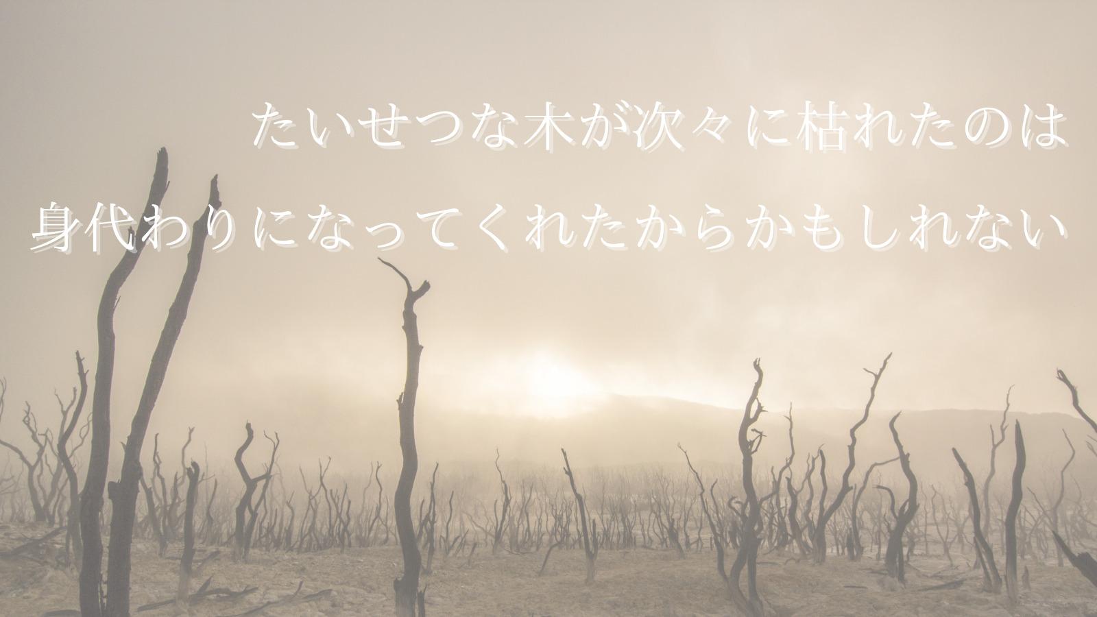 立ち枯れる木々